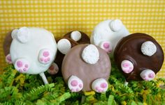 Bunny tail pops! Made from Oreos dipped in choc with mini marshmallows