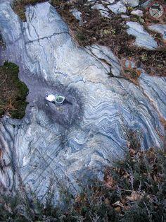 "Mass. Geol. Survey on Twitter: ""#FridayFold of pinstripe schists within the #Cambrian Marlboro Fm in #MarlboroughMA. #geology"""