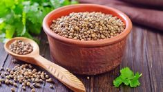 Coriander is probably native to the Middle East and southern Europe, but has also been known in Asia and the Orient for millennia. It is found wild in Egypt and the Sudan, and sometimes in English fields. It is referred in the books of Exodus and Numbers, where the colour of 'manna' is compared to coriander.  For more visit http://aenixexim.com/product/coriander-seed/