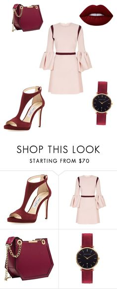 """Untitled #9"" by chanalieberman on Polyvore featuring Jimmy Choo, Roksanda, Abbott Lyon and Lime Crime"