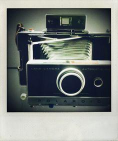 Polaroid by Helmut Newton.......♔..