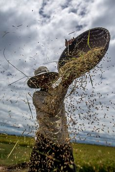 Rice winnowing . Hue, Vietnam Laos, Love Wallpaper Backgrounds, Beautiful Vietnam, Indochine, Nostalgia, Island Life, People Around The World, World Heritage Sites, Nature Pictures