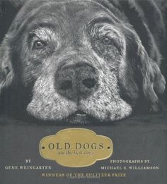Old Dogs: Are the Best Dogs by Gene Weingarten #Books #Dogs #Photography