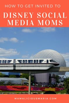 Find out how to get an invite to Disney Social Media Moms. I've been invited 5 times and I've put together the tips that I believe helped me continue to get invited to this prestigious invite-only conference.