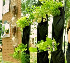 5 tiny gardening ideas (so you can think big) No yard? No problem! These creative concepts allow you to grow something healthy in whatever space is available.