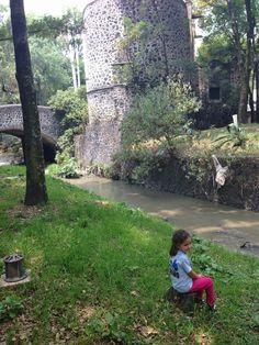 Agoniza el último #riovivo, el Rio Magdalena, después de más de 100 años de haber sido pintado por José Maria Velasco. El puente y la Capilla de Panzacola son la referencia que aún puede reconocerse Foto Mónica Tapia A.
