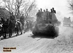War Dogs, Defence Force, Ww2 Tanks, World War Ii, Hungary, Wwii, Military, History, War