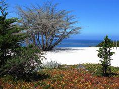 Carmel-by-the-Sea in California