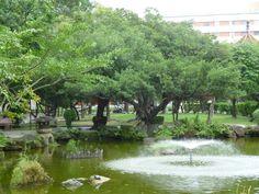 2:28 Peace Park #ThePurplePassport #nature