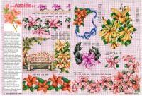 """ru / tymannost - Альбом """"Encyclopedie du point de croix ( Fleurs arbres et feuilles )"""" Le Point, Cross Stitch, Diagram, Map, Gallery, Dots, Flowers, Leaves, Punto Croce"""
