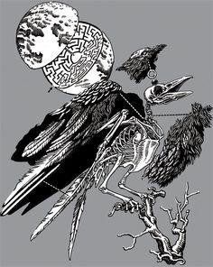 drawing moon animal skull animation bird animated gif skeleton ...