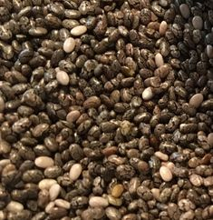 Chia - hispanic sage seeds / salvia hispanica / These seeds have a tremendous nutritional value and healing properties. They were used by the old Aztecs who ate them before the fighting expeditions. Salvia Hispanica, Nutritional Value, Superfoods, Sage, Seeds, Healing, Salvia, Super Foods