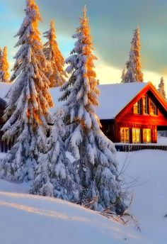 Winter evening - Lizaveta - Google+
