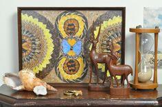 Ingelijste Vlinder Rariteit / Framed Butterfly Curiosity from Dancers Road Vintage shop on Etsy