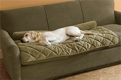 Dog cover for the couch.  Need one of these!