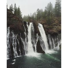 Caliparks : McArthur-Burney Falls Memorial State Park Burney Falls, Local Parks, Park Photos, Park City, Dream Vacations, Regional, Waterfalls, State Parks, Beautiful Places