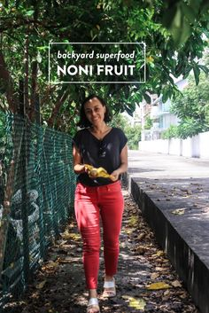 Backyard Superfood // Noni