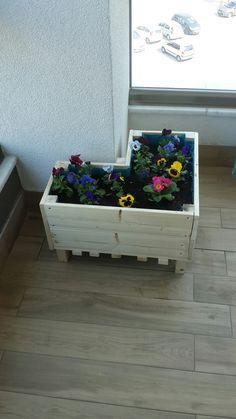 diy project - 1 : mini garden