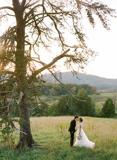 Pippin Hill Outdoor Wedding | Outdoor Wedding Ideas | Vineyard Wedding Ideas