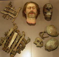 Facial reconstruction of ancient remains of Celtic people in Kelten Römer Museum, Manching, Germany. Historical Artifacts, Ancient Artifacts, Forensic Facial Reconstruction, 3d Reconstruction, Celtic Culture, Old Faces, Human Evolution, Mystery Of History, Iron Age