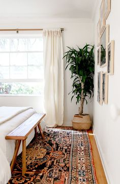 Gorgeous rug paired with natural tones, textiles and bright light
