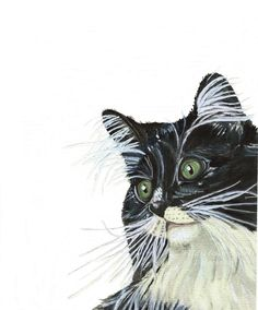 Watercolor Tuxedo Cat Art Print from my original painting, Black and White pet portrait, pet art, Contemporary, modern rustic wall decor, shelf art, pet lovers gift. Unframed  Two tones of white (warm and bright) contrast against the black coat of this handsome Tuxedo Cat. Striking green eyes add a pop of color making this a print a great addition to many decor styles - from modern rustic and contemporary to kid's rooms and the nursery.