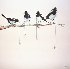 magpie painting - Google Search