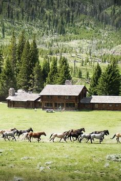 would love to have a ranch like this
