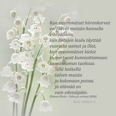 Finnish Words, Spring Words, Diy Presents, Lily Of The Valley, Peace Of Mind, Live Life, Finland, Wise Words, Texts