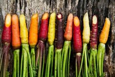 Colorful carrots: Earth Day is a perfect time to try new seasonal spring-produce recipes! Fruit And Veg, Fruits And Veggies, Winter Vegetables, Root Vegetables, Colorful Food, Catering, Dessert, Earth Day, Vegetable Garden