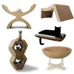 Design Katzenmöbel am besten Bild und Cbfefaaaaaeba Jpg
