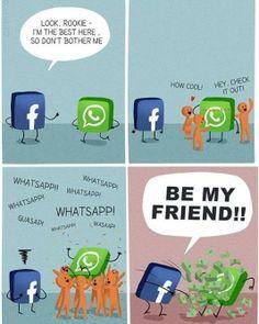 Friendship Between Facebook & Whatsapp