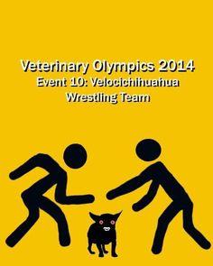 Veterinary Olympics Event 10 http://atwork.avma.org/wp-content/uploads/2014/02/Olympics.writeups.pdf