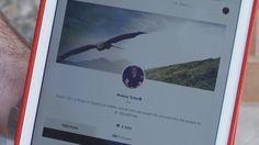"Inside Gab, The Social Network Attracting ""Alt-Right"" Users - Mark Dalton Social Networks, Continue Reading, November, Feelings, Blog, November Born, Blogging, Social Media"