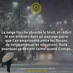 La neige fraiche absorbe le bruit, et réduit le son ambiant dans un paysage parce que l'air emprisonné entre les flocons de neige atténue les vibrations. Voilà pourquoi ça devient calme quand il neige. | Saviez-vous que ?