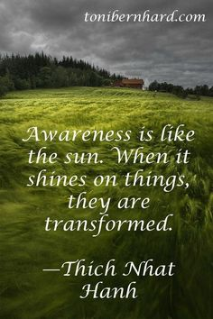 Awareness is like the sun ~ When it shines on things ~ They are transformed ~❤️~ Thich Nhat Hanh Thich Nhat Hanh, Spiritual Awakening, Spiritual Quotes, Importance Of Peace, A Course In Miracles, Coaching, Life Quotes, Attitude Quotes, Wisdom Quotes