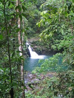 Rio Seco  - Trinidad Toronto Canada, Waterfalls, Trinidad And Tobago, Hockey, Rio, Carnival, Blood, Hiking, Camping