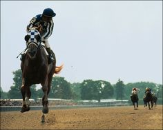 Secretariat: most unforgettable, graceful, powerful horse of all time, IMO.