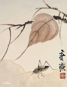http://media-cache-ec0.pinimg.com/236x/4a/80/c7/4a80c70559ac96d346be3fceb817b4be.jpg : Qi Baishi