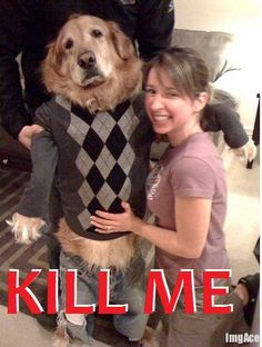 kill-me-dressed-up-dog