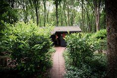 i love eco blog, natuurhuisje.nl, boshuisje, huis in de natuur, huis in bos