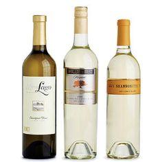 Sauvignon Blanc: crisp and refreshing white wine