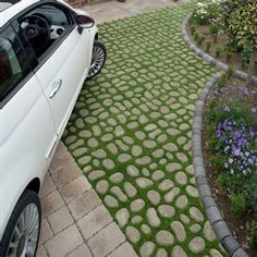 Bioverse System driveway
