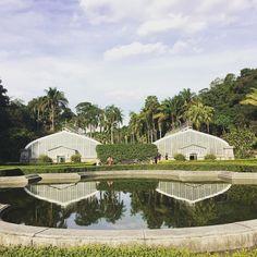 Um bom passeio para o domingo o Jardim Botânico de São Paulo abre às 9h e fecha às 17h. Dê uma passadinha lá vale a pena! #CatracaSP #ViNoCatraca (: @mauriciotcosta)