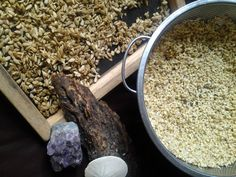 My soaked sunflower seeds and raw buckwheat groats are drying.