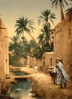 Here for your consideration is an artistic picture of Street in the old town. This color photochrome print was created in 1899 in Biskra, Algeria. The picture presents Street in the old town, I, Biskra, Algeria. Places Around The World, Oh The Places You'll Go, Travel Around The World, Places To Travel, Travel Destinations, Places To Visit, Around The Worlds, Africa Travel, Morocco Travel