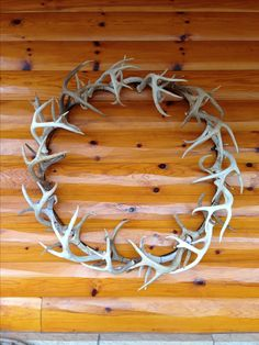 Deer antler wreath. Made this for our house out of sheds and cutoff antlers. Bout out of material hope deer season opens soon!