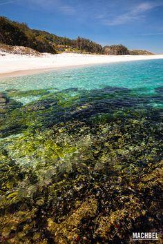 Fondo marino Parque Nacional de las Islas Atlánticas de Galicia Islas Cíes