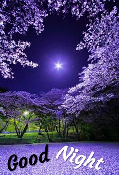 Good Night For Him, Beautiful Good Night Images, Romantic Good Night, Good Night Prayer, Cute Good Night, Good Night Gif, Good Night Sweet Dreams, Good Night Moon, Beautiful Gif