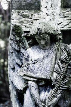 #Graveyard #Friedhof #Grabengel #Friedhofsengel #angel #Mönchengladbach